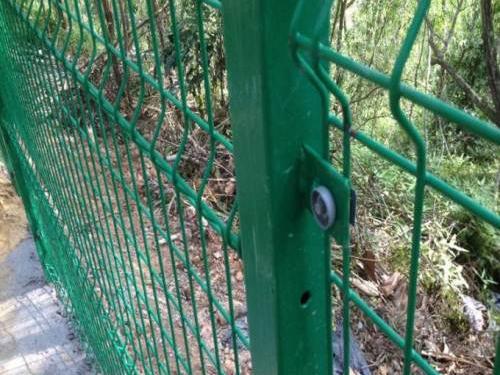 绿色围栏网